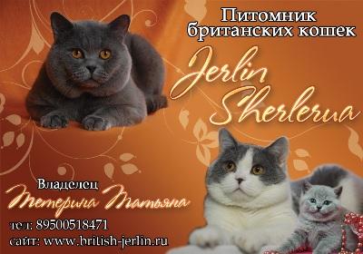 Jerlin Sherlerua